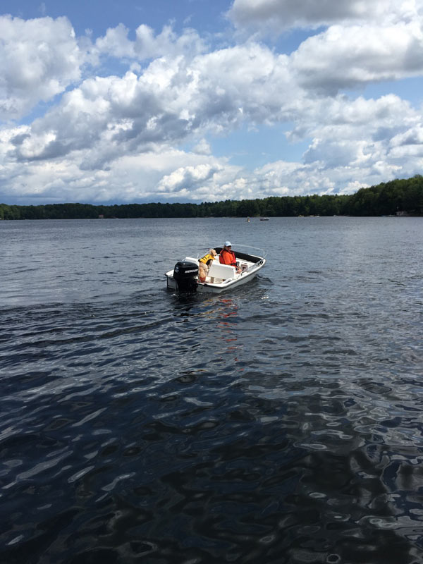 woman and dog on a motorboat on a lake