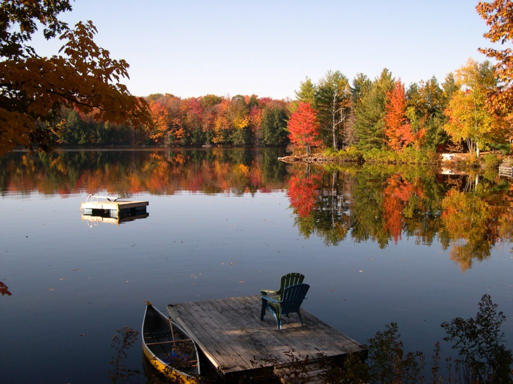 mirror-like lake in autumn with coloured leaves on trees