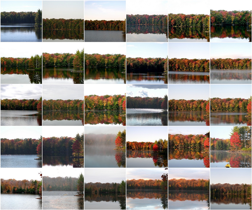 montage of scenery shots