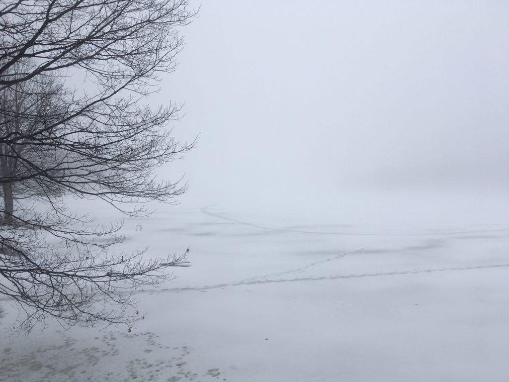 fog on snowy lake