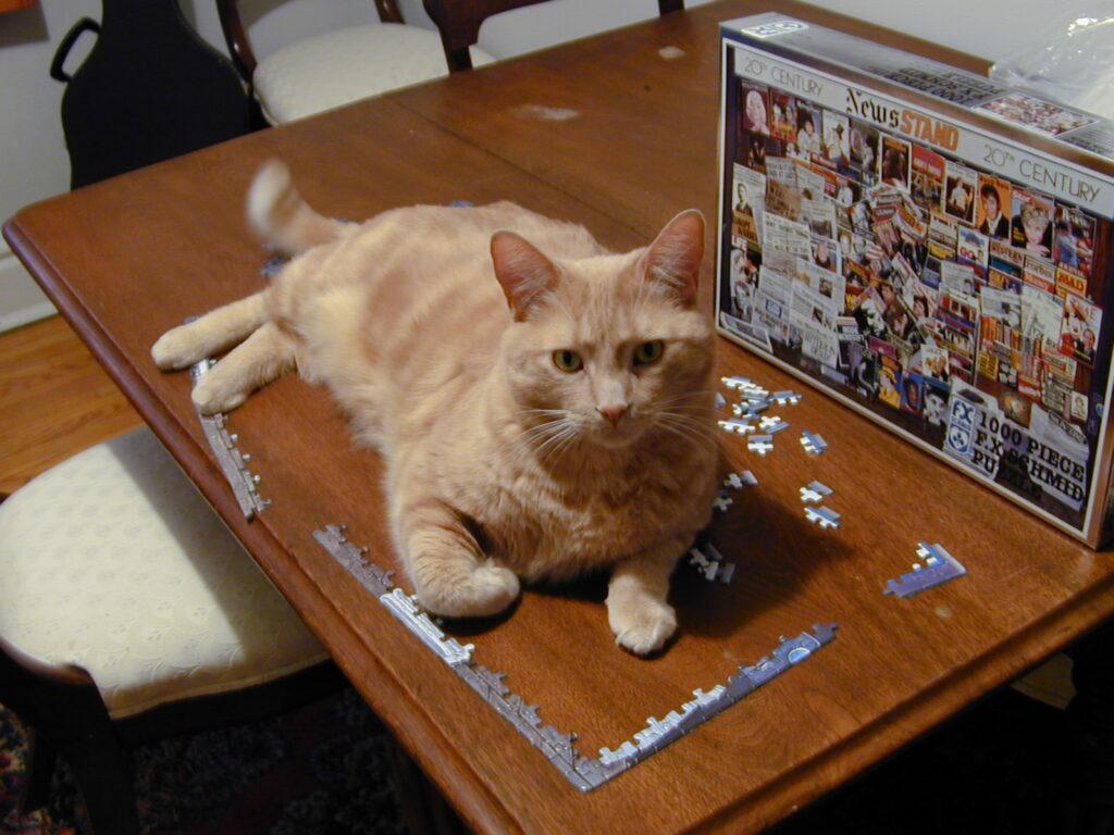 cat disrupting jigsaw puzzle